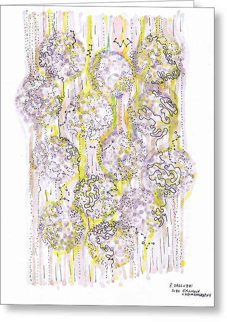 Valluzzi Greeting Cards - Size Exclusion Chromatography Greeting Card by Regina Valluzzi