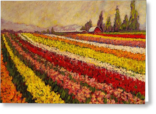 Shed Paintings Greeting Cards - Skagit Valley Tulip Field Greeting Card by Charles Munn
