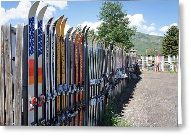 Ski Fence Greeting Card by Priscilla Wolfe