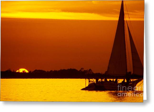 Eastern Shore Greeting Cards - Skipjack Sunset Greeting Card by Thomas R Fletcher