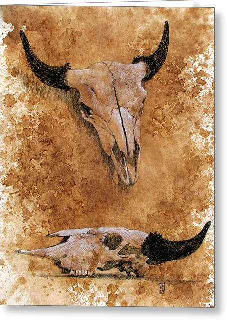 Debra Jones Greeting Cards - Skulls Greeting Card by Debra Jones