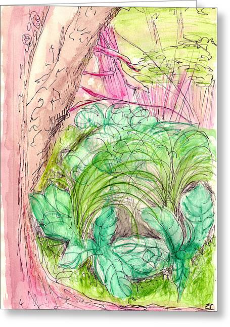 Forest Floor Drawings Greeting Cards - Skunk Cabbage Swamp Greeting Card by Elizabeth Thorstenson