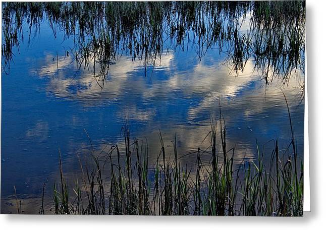 Featured Art Greeting Cards - Sky in the Marsh Greeting Card by Brian Hamilton