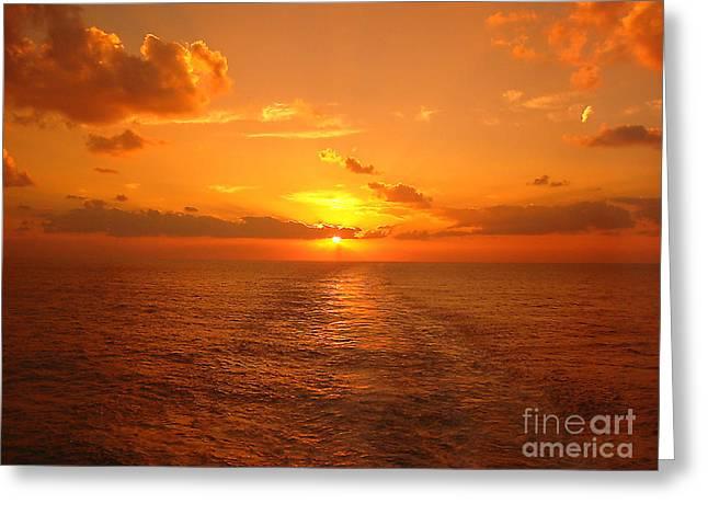 Orange Sky Greeting Cards - Skyfire Sunset on Marco Island Greeting Card by Judee Stalmack