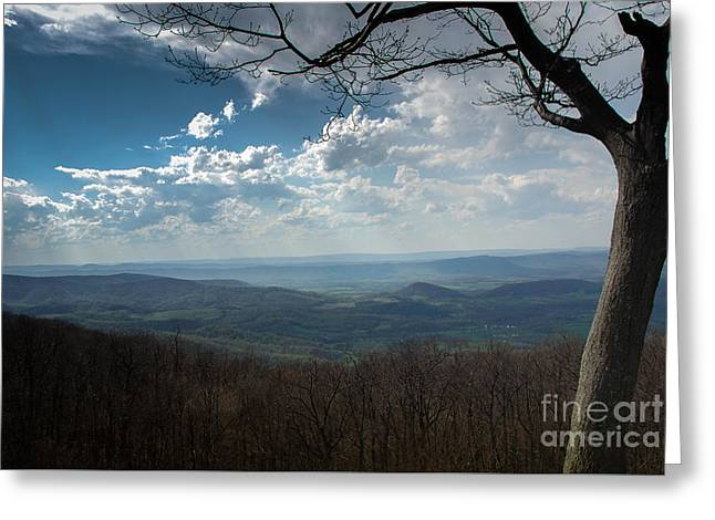 Outlook Greeting Cards - Skyline Drive Outlook 3 Greeting Card by Teresa Henry