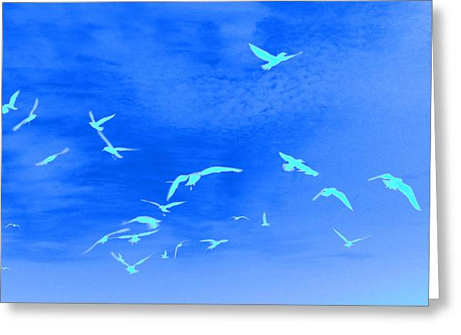 White Digital Greeting Cards - Skyscape 3 Greeting Card by Paul Adamson