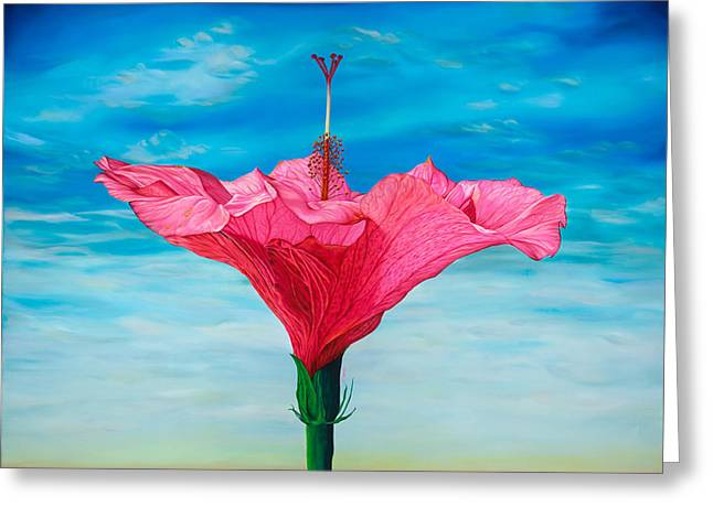 Hibiscus Greeting Cards - Skyward Greeting Card by Kerri Meehan