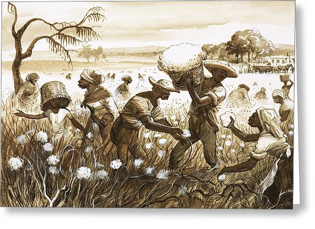 Unfair Greeting Cards - Slaves picking cotton Greeting Card by English School