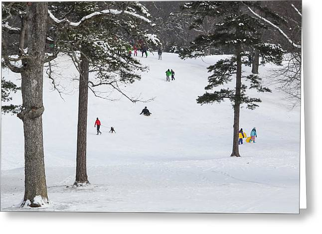 Sledding Signal Mountain Tn #1 Greeting Card by Tom and Pat Cory