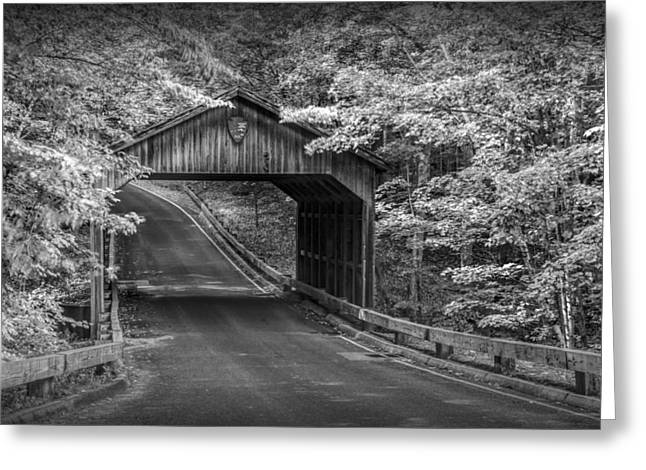 Scenic Drive Greeting Cards - Sleeping Bear Dunes Covered Bridge in Black and White Greeting Card by Randall Nyhof