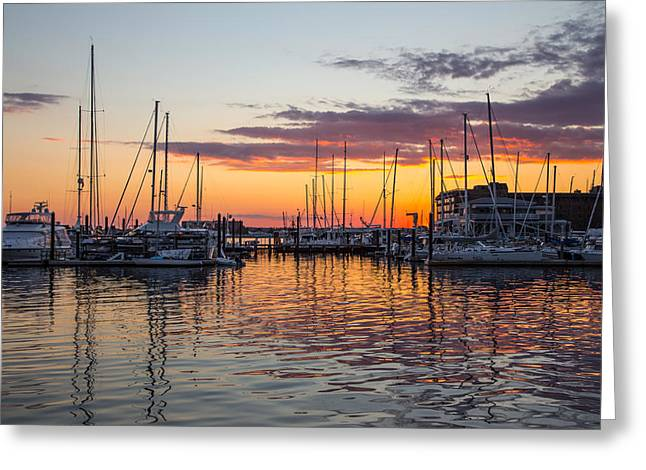 Sailboats In Harbor Greeting Cards - Sleeping Boats Greeting Card by Karol  Livote