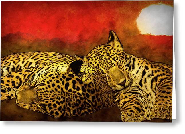 Sleeping Cats Greeting Card by Jack Zulli
