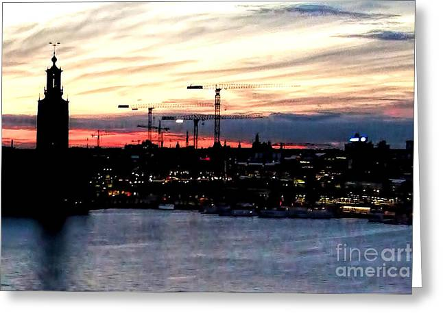 Recently Sold -  - Sunset Posters Greeting Cards - Sleeping Cranes Greeting Card by GabeZ Art