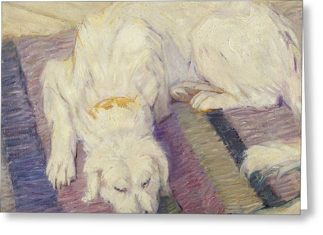 Sleeping Dogs Greeting Cards - Sleeping Dog Greeting Card by Franz Marc