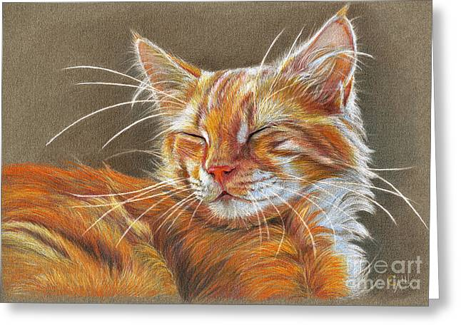 Cute Kitten Drawings Greeting Cards - Sleeping Ginger kitten CC12-005 Greeting Card by Svetlana Ledneva-Schukina