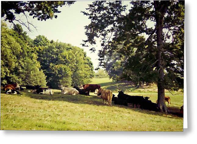 Tennessee Farm Digital Greeting Cards - Sleepy Afternoon Greeting Card by Jan Amiss Photography