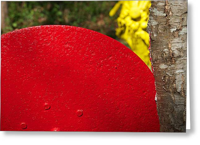 Colors Sculptures Greeting Cards - Slicing Yellow Greeting Card by Eliza McNally