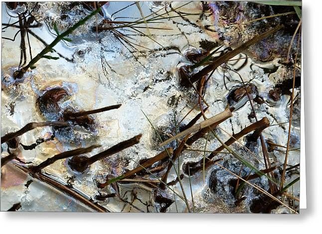 Oil Slick Greeting Cards - Slick Greeting Card by Laura Hol