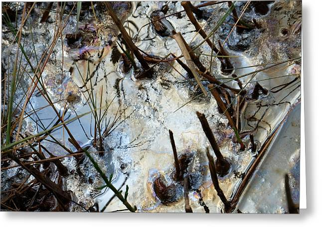 Oil Slick Greeting Cards - Slicked Greeting Card by Laura Hol