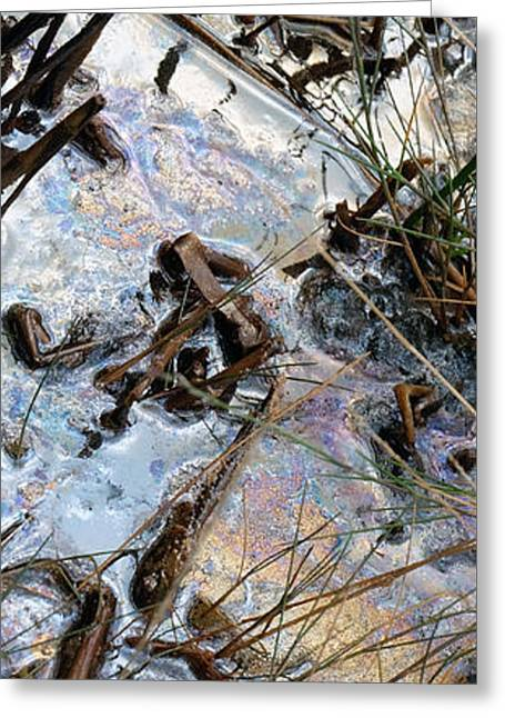 Oil Slick Greeting Cards - Slickest Greeting Card by Laura Hol