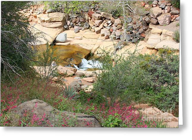 Slide Rock With Pink Wildflowers Greeting Card by Carol Groenen