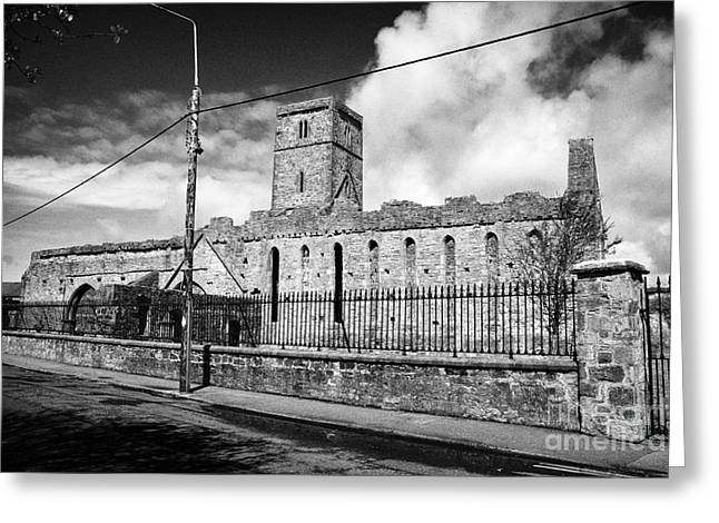 Sligo Greeting Cards - Sligo Abbey Republic Of Ireland Greeting Card by Joe Fox