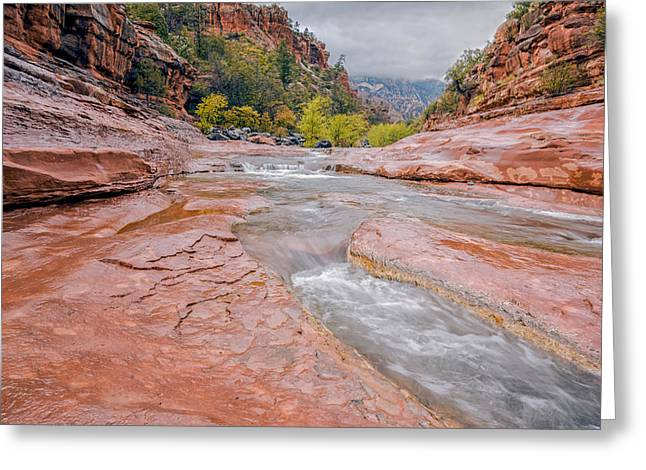 Oak Creek Greeting Cards - Slip and Slide Greeting Card by Aron Kearney Fine Art Photography
