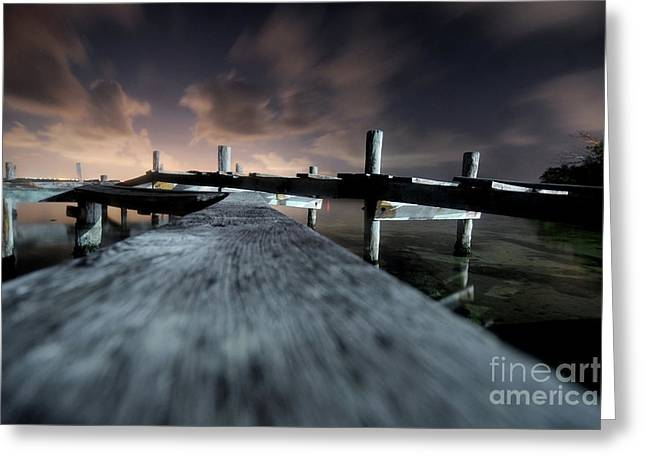 Mike Lindwasser Photography Greeting Cards - Slippery Greeting Card by Mike Lindwasser Photography