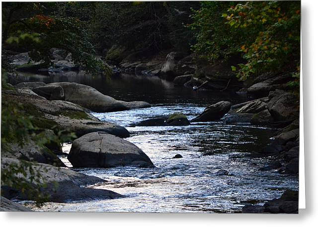 Fishing Creek Greeting Cards - Slippery Rock Creek Greeting Card by Michael Hills