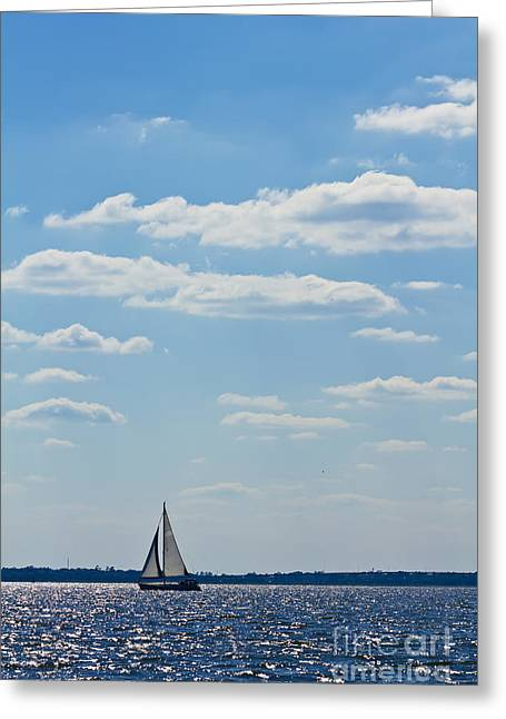 Blue Sailboats Greeting Cards - Sloop Sailing on the Harbor Greeting Card by Dustin K Ryan