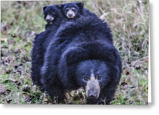 Sloth Digital Greeting Cards - Sloth bear mum with two tiny cubs on her back Greeting Card by Liz Leyden