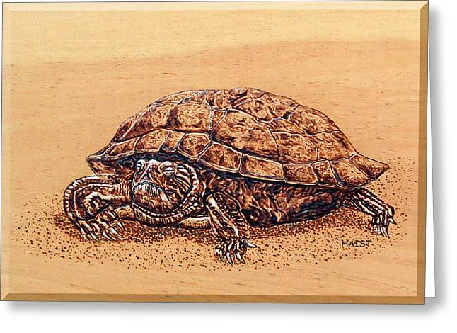 Turtle Pyrography Greeting Cards - Slow but Sure Wins the Race Greeting Card by Ron Haist