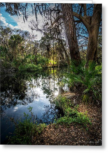 Slow Drift Greeting Card by Marvin Spates