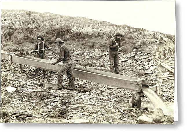 Sluice Box Placer Gold Mining C. 1889 Greeting Card by Daniel Hagerman