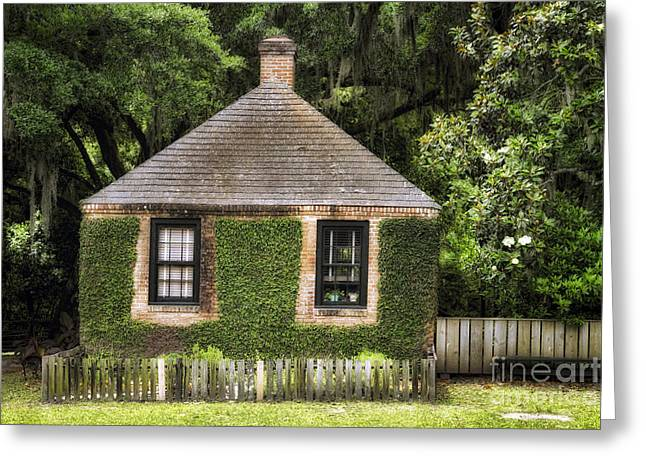 The Trees Greeting Cards - Small House on the Bayou Greeting Card by George Oze