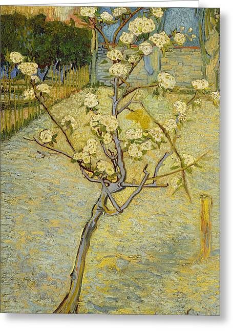 Pear Tree Greeting Cards - Small pear tree in blossom Greeting Card by Vincent van Gogh