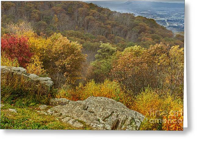 Scenic Drive Greeting Cards - Small Piece Of Fall Greeting Card by Tom Gari Gallery-Three-Photography