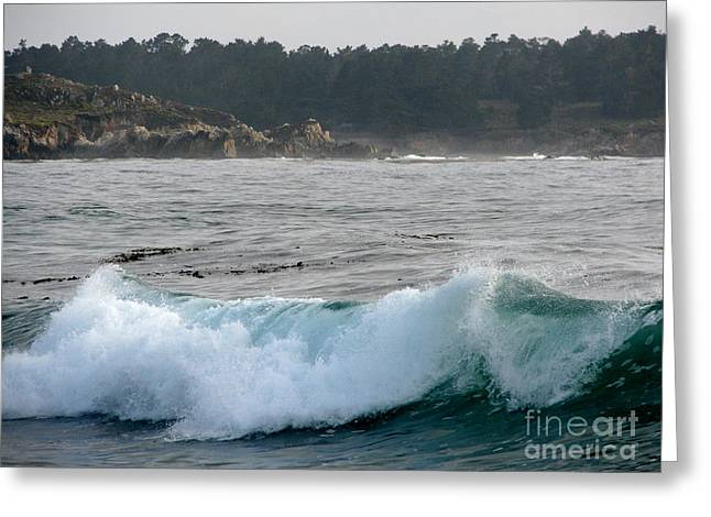 Small Wave On Carmel Bay Greeting Card by James B Toy