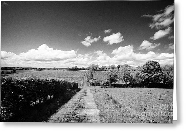Small Worn Concrete Laneway Leading To Farmland In Rural County Monaghan At Tydavnet Republic Of Ire Greeting Card by Joe Fox