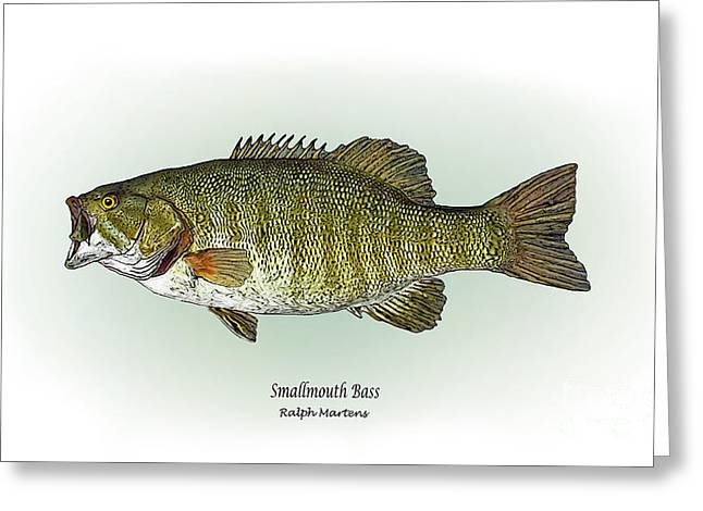 Smallmouth Bass Greeting Card by Ralph Martens