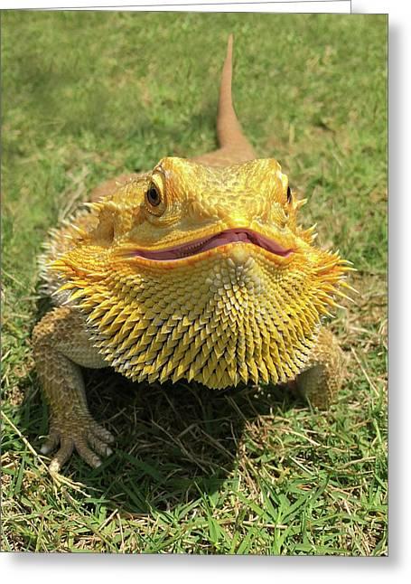 Smiling Bearded Dragon  Greeting Card by Susan Leggett