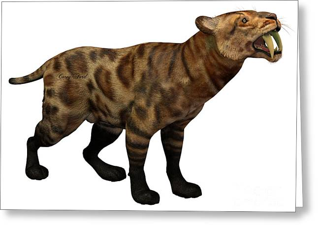 Saber Greeting Cards - Smilodon Cat on White Greeting Card by Corey Ford