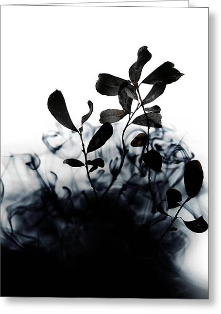 Smoke Without Fire II Greeting Card by Varpu Kronholm