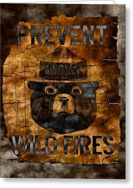 Wildfires Greeting Cards - Smokey The Bear - Only You Can Prevent Wild Fires Greeting Card by John Stephens