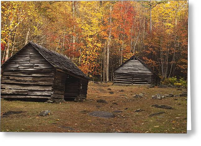Log Cabins Photographs Greeting Cards - Smoky Mountain Cabins at Autumn Greeting Card by Andrew Soundarajan