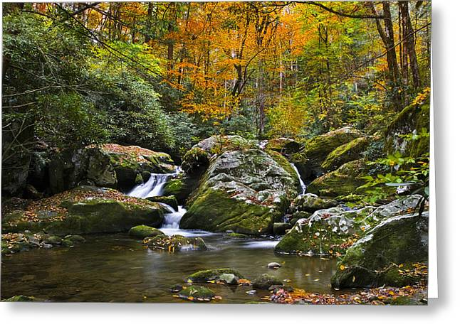 Great Smokey Mountains Greeting Cards - Smoky Mountain Waterfall Greeting Card by Rich Franco