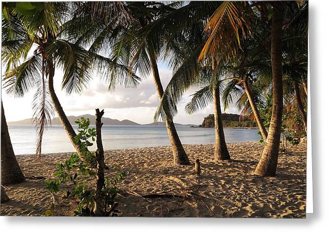 Paradise Road Greeting Cards - Days End Greeting Card by Eric Glaser