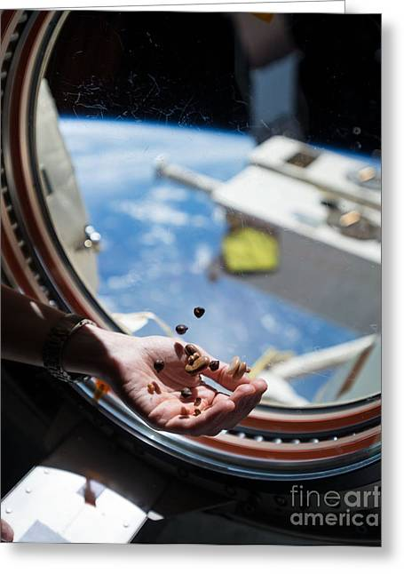Satellite View Greeting Cards - Snacking In Space Greeting Card by Science Source