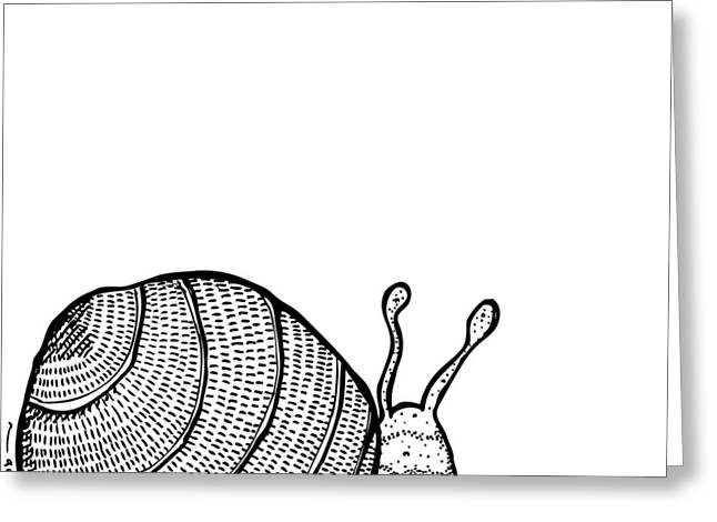 Snail Greeting Card by Karl Addison