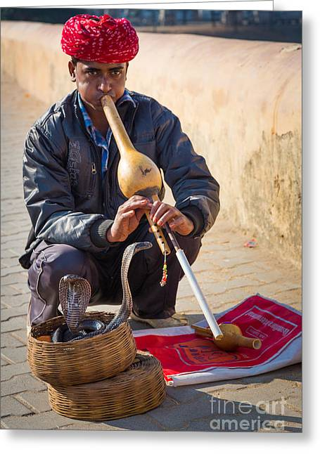 Cobra Photographs Greeting Cards - Snake Charmer Greeting Card by Inge Johnsson